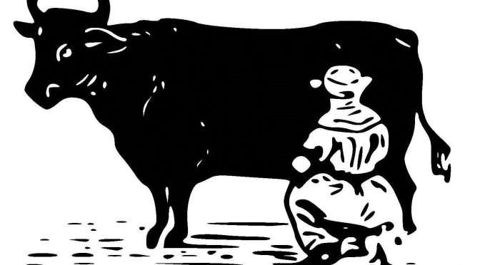 Finanzausgleich – quod licet iovi, non licet bovi