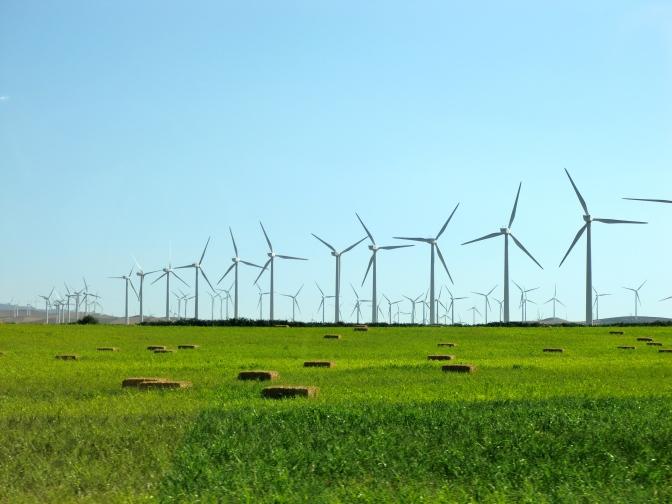 ARD: Der Kampf um die Windräder